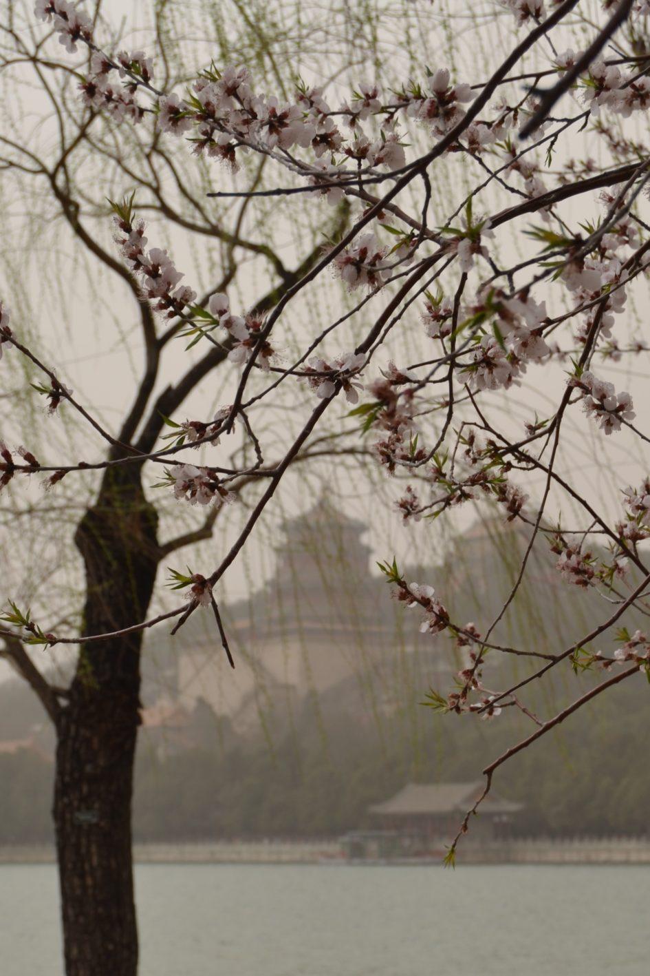 Sommarpalatset Peking, Kina